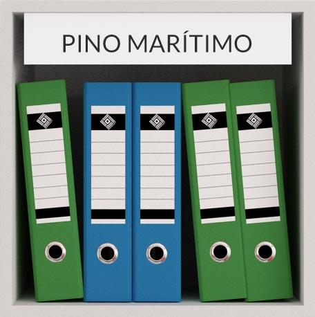 MADERA-PINO-MARITIMO-TECNICA-BIOPARQUET