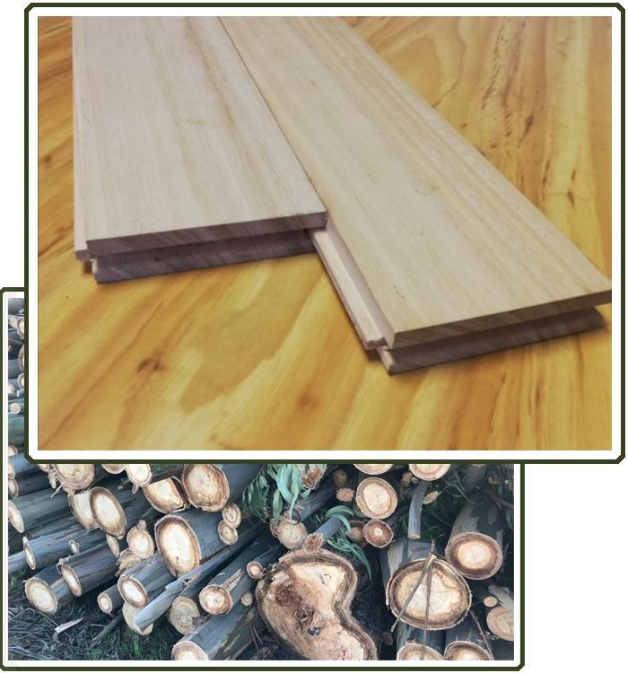 comprar-parque-suelo-madera-tarima-maciza-eucalipto-espana-precio-1