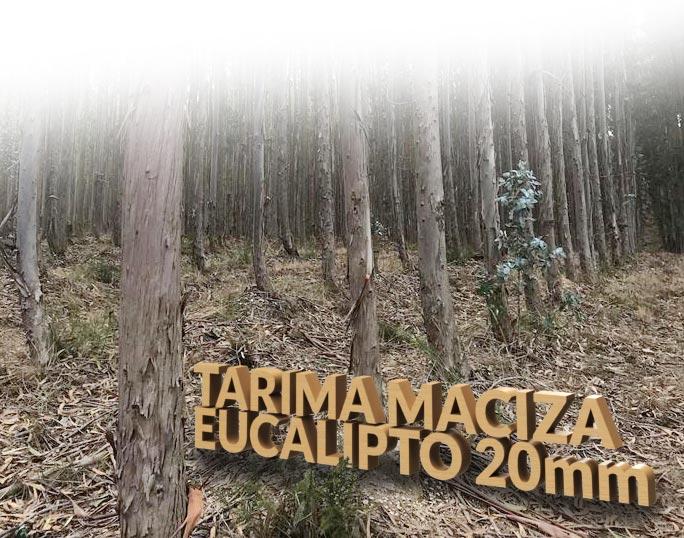 precio-tarifa-maciza-suelo-parquet-eucalipto-blanco-espanol-instalar-3